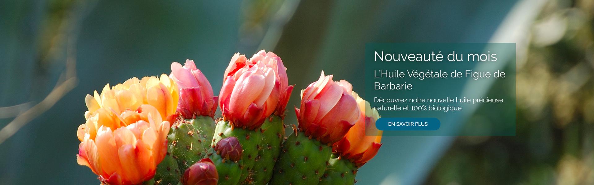 Huile Végétale de Figue de Barbarie. Découvrez notre nouvelle huile précieuse 100% naturelle est  biologique.